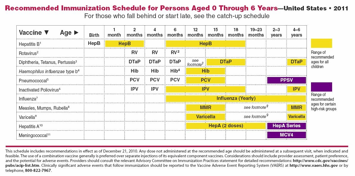 what is the  u0026quot normal u0026quot  vaccination schedule